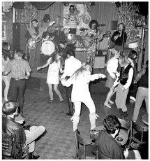 Zappa 66