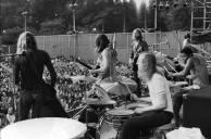 Allmans July 71